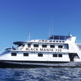 MV Black Manta
