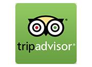 www.tripadvisor.com